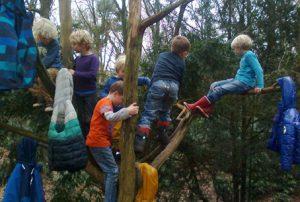 We maken van de boom een kapstok
